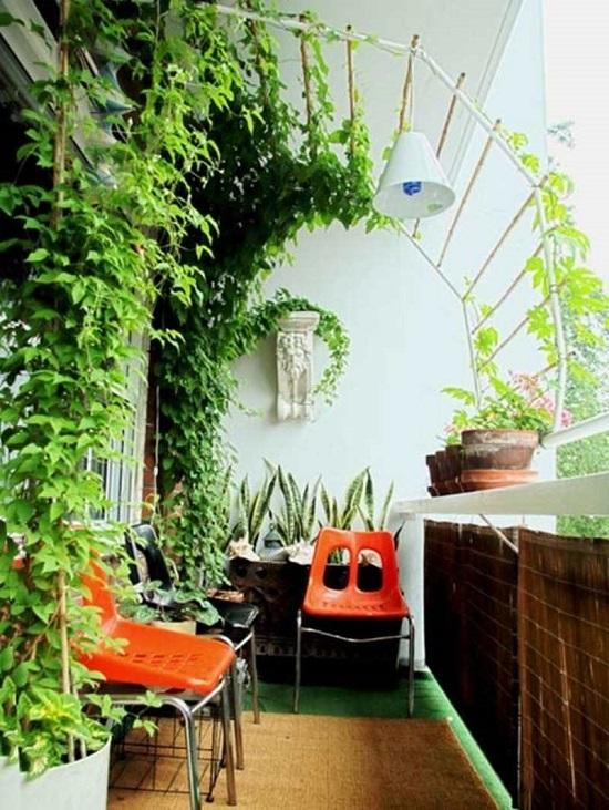 Вертикальное оформление балкона растениями