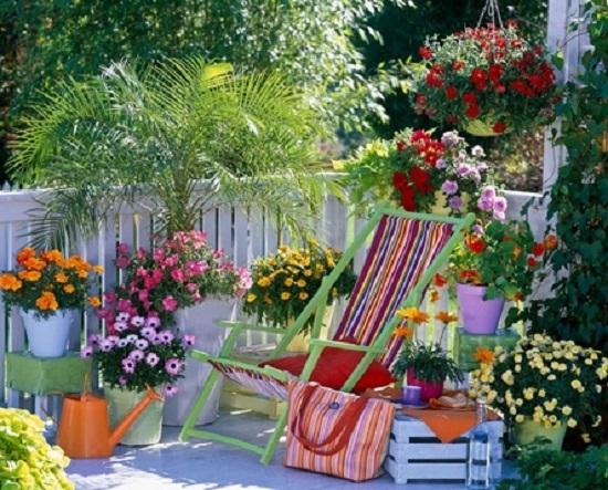 Яркие цветы на балконе